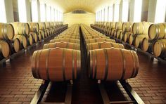 La DO Ribera del Duero, favorita entre los que compran vino en plataformas digitales