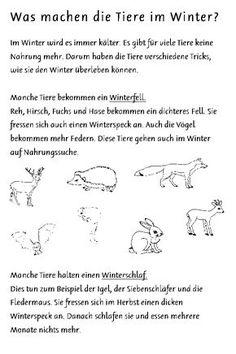Tiere: Im Winter 09 (Überwinterungsarten) Primary School, Pre School, Learn German, Thing 1, Preschool Curriculum, German Language, Months In A Year, Nicholas Sparks, Told You So