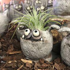 Monster Air Plant Pot - The Rock Pile Garden Center Cement Art, Concrete Crafts, Concrete Garden, Ceramic Monsters, Clay Monsters, Clay Projects, Clay Crafts, Diy And Crafts, Garden Crafts