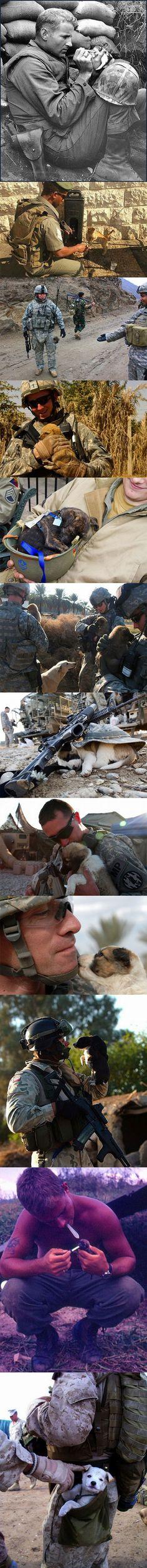 Avec leurs compagnons de poche la vie est moins difficile et la guerre moins longue.