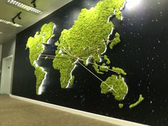 My work ... World Map Moss wall @ Etihad Airline - HQ office , UAE . 5.4 m X 2.5 m H . Office Interior Design, Office Interiors, Indoor Garden, Indoor Plants, Vertical Garden Wall, Vertical Bar, Moss Art, Green Office, Deco Nature