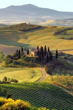 Val d'Orcia, Tuscany, Italy | iPhone Backgrounds, province of Siena  Be still my heart