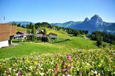 Svizzera: 50 luoghi imperdibili da visitare quest'estate - Mini Me Explorer Engelberg, Jungfraujoch, Estate, Golf Courses, Mini