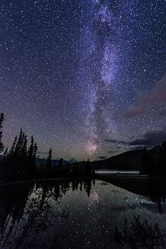 Starry Starry Night by Alex Lapidus