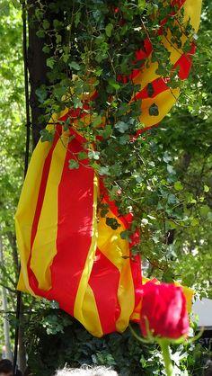 Diada de Sant Jordi, Barcelona