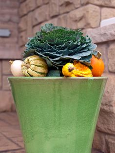 Whether you're a floral pro or a novice designer, get your home party-ready this fall with a bounty of colorful and unique floral arrangements you can create right at home. Patio Planters, Fall Planters, Ornamental Cabbage, Fall Containers, Flower Arrangements Simple, Diy Fall Wreath, Autumn Decorating, Decorating Ideas, Autumn Home
