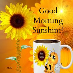 Are you looking for images for good morning motivation?Check this out for very best good morning motivation inspiration. These entertaining quotes will you laugh. Good Morning For Him, Good Morning Tuesday, Good Morning Handsome, Good Morning Beautiful Quotes, Good Morning Prayer, Good Morning Funny, Good Morning Sunshine, Good Morning Picture, Good Morning Greetings
