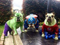 Disfraz Hulk, Capitán América y Mujer Maravilla
