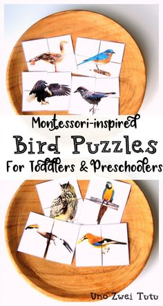 DIY Bird Puzzles For Toddlers And Preschoolers With Real Photos is part of Montessori toddler activities - Does your little one loves birds Would you like to make your own Montessoriinspired puzzles Get your free printable and tutorial here Montessori Preschool, Preschool Learning, Toddler Preschool, In Kindergarten, Toddler Crafts, Teaching, Educational Activities For Kids, Preschool Activities, Puzzles For Toddlers