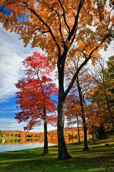 Lake Waramaug State Park, Kent, Connecticut.I want to visit here one day.Please check out my website thanks. www.photopix.co.nz