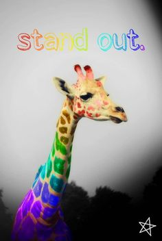 dont try to fit in when you were born to stand out