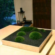品品(sinajina)小林健二さんの「苔 景色盆栽-陶器-」:花のセレクトショップ・ブラウズBROWSE
