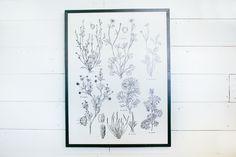 Exact print above fireplace. Framed Botanical Print – The Magnolia Market
