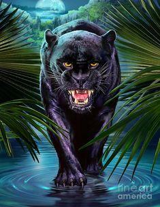 DIY Diamond Embroidery Diamond Painting Kit Black Panther Cross Stitch Mosaic Diamond Picture of Rhi Beautiful Cats, Animals Beautiful, Cute Animals, Wild Animals, Baby Animals, Big Cats Art, Cat Art, Black Panther Tattoo, Panther Tattoos