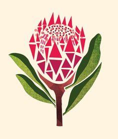 Pretty proteas pattern closeup for string art Protea Art, Flor Protea, Protea Flower, Fabric Artwork, Fabric Painting, Tulip Painting, Australian Native Flowers, Collages, Plant Illustration