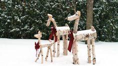 À l'occasion du temps des Fêtes, pourquoi ne pas vous servir de bûches pour réaliser une famille de cervidés? Place à un projet simple et écologique!