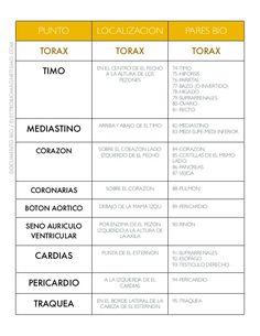 PUNTO LOCALIZACION PARES BIO TORAX TORAX TORAX TIMO EN EL CENTRO DE EL PECHO A LA ALTURA DE LOS PEZONES 74-TIMO 75-HIPOFIS... Spa, Healing, School, Nursing, Medicine, Cranial Nerves, Emotional Healing, Magnet Therapy, Massage Therapy
