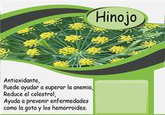 عرق رازیانه # Hinojo Barcelona, Chart, Fennel, Products, Barcelona Spain