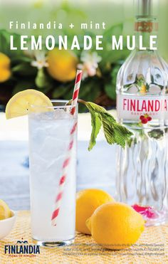 Sip on something that is sure to satisfy your sweet tooth—and beat the heat at the same time—this Lemonade Mint Mule. Featuring Finlandia Vodka, refreshing citrus, and fresh mint, it's not hard to see why this cocktail recipe will be your go-to beverage for the season.