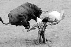 And karate kick to the head..... Bravo!!