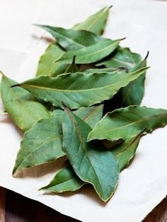 The laurel to recover a cloth that has rubbed off Cleaning Recipes, Cleaning Hacks, Tips & Tricks, Natural Cleaning Products, Clean House, Good To Know, Aloe Vera, Helpful Hints, Plant Leaves