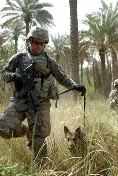 BAGHDAD - Nero, a German Sheppard military working dog, and his handler, Castle . Military Working Dogs, Military Dogs, Police Dogs, Military Police, Military Service, Military Helicopter, Military Veterans, Army, Dog Soldiers