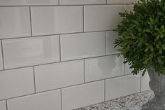 Delorean Gray grout with white subway tile: kitchen backsplash ideas Subway Tile Colors, Grey Subway Tiles, White Subway Tile Backsplash, Subway Tile Kitchen, Kitchen Backsplash, Backsplash Ideas, Tile Ideas, Tile Grout, White Tiles Grey Grout