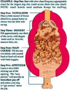 How to stuff the perfect kong. My dogs will love me for this..