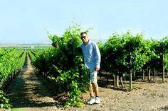 Michele e Fabiana Barulli: due giovani imprenditori della Vinicola Fabiana che, con il loro vino, portano alta nel mondo la bandiera del Made in Taranto Scopri di più: http://www.madeintaranto.org/il-vino-che-piace-agli-americani-e-della-vinicola-fabiana/  #Madeintaranto #Taranto #Puglia #Weareinpuglia #MagnaGrecia #Salento