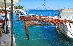 Chios island . Fresh food