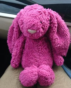 Found on 27 Jun. 2016 @ M4 Services, Leigh Delamere . Pink jellycat bunny missing her human! Visit: https://whiteboomerang.com/lostteddy/msg/unybha (Posted by Celeste on 27 Jun. 2016)