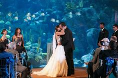 Saying I Do... under the sea at the Florida Aquarium! Image: Carrie Wildes Photography