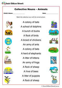 Correct errors before use! Or else it's impossible to join all 14 pictures to their correct collective nouns. English Grammar For Kids, English Worksheets For Kids, 1st Grade Worksheets, English Vocabulary Words, Animal Worksheets, Teaching Vocabulary, Teaching Grammar, Nouns For Kids, Collective Nouns Worksheet