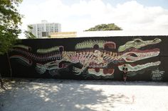 Nychos- dissection of a gator   (miami 2013)