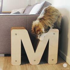 #chat #maison #design #déco #griffoir #animal #madeinfrance #homycat #miaou #lifestyle #cutecat #cutecats #meow