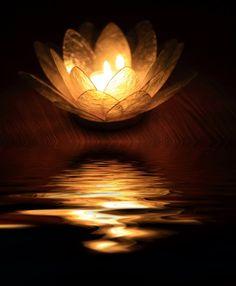 ☆ Zen Reflected.。Photography By :→: Mstargazer ☆