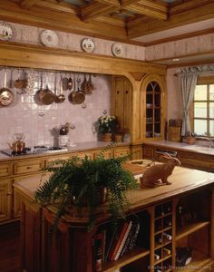Ooh, love the wood surround over the cooking area and the tiled backsplash wall with the pot rack overhead ~  Google Image Result for http://www.kitchen-design-ideas.org/images/kitchen-cabinets-traditional-medium-wood-golden-brown-015a-s259150-island-coffered-ceiling.jpg