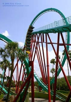 Photo of the Kumba multi-inversion, looping roller coaster at Busch Gardens theme park in Florida. Roller Coaster Pictures, Best Roller Coasters, Florida Theme Parks, Tampa Florida, Family Vacations, Dream Vacations, Busch Gardens Tampa Bay, Teenage Wasteland, Amusement Park Rides