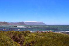 Reiseblog mit Reisetipps, Hoteltipps, Restauranttipps, Urlaub: Kapstadt: Unterwegs mit der Condor Crew ~ REISEFREUNDE