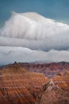When The Cold Front Meets The Hot Front The Fun Begins! This happens in AZ during Monsoon season (aka best time of the year) Sky And Clouds, Storm Clouds, Cool Photos, Beautiful Pictures, Amazing Photos, Amazing Places, Wild Weather, Natural Phenomena, What A Wonderful World