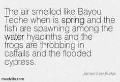 The air smelled like Bayou Teche when is spring and the fish are spawning among the water hyacinths and the frogs are throbbing in cattails and the flooded cypress. James Lee Burke, Southern Women, Water Hyacinth, Beautiful Voice, Frogs, Inspirational, Fish, Sayings, Quotes