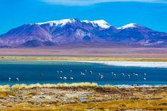 Deserto do Atacama (Chile) - Vulcões, lagos, montanhas, salinas e gêiseres compõem a paisagem deste ... - Shutterstock