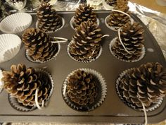 HOW TO MAKE: PINE CONE FIRE STARTERS