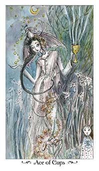 Ace of Cups Tarot Card - Paulina Tarot Deck
