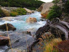 Caminho ao Glaciar Piedras Blancas - El Chalten - Argentina