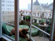 Bohemian outdoor porch, balcony with dog and floor cushions Böhmische Außenterrasse, Balkon mit Hunde- und Bodenkissen Small Balcony Decor, Porch And Balcony, Balcony Railing, Outdoor Spaces, Outdoor Living, Outdoor Decor, Winter Balkon, Dog Area, Brick And Wood