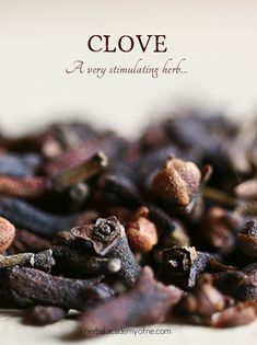 We all know clove is a staple of wintertime recipes, including desserts like ginger snaps and pumpkin pie. Clove is also used as a warming herb...