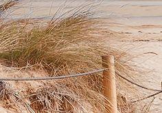 Impression sur toile 200x100 cm - Grand foramt - XXL - 3 couleurs ? Choisir - 5 Parties - Image sur toile - Images - Photo - Tableau - motif moderne - Décoration - pret a accrocher - paysage naturee plage c-B-0006-b-o 200x100 cm B&D XXL: Amazon.fr: Cuisine & Maison