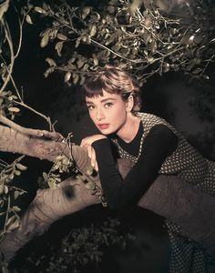 Audrey Hepburn  Will I look as elegant if I take a picture of myself with a tree?