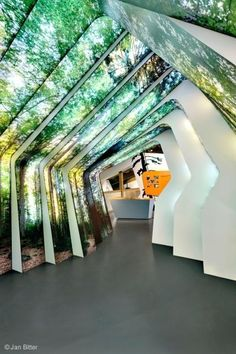#indoor outdoor #trees walls